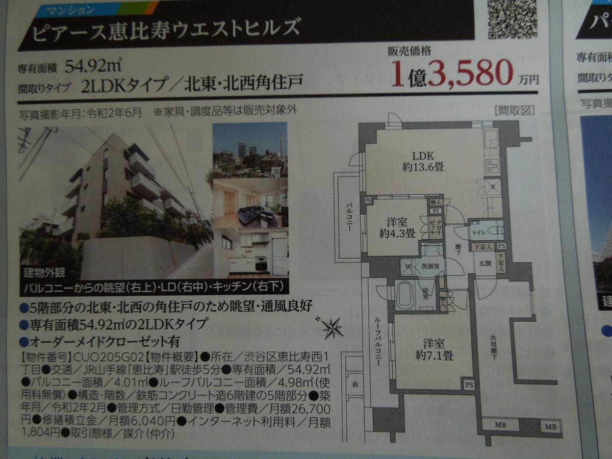 f:id:Ikegamiblog_tokyo:20200704102905j:plain