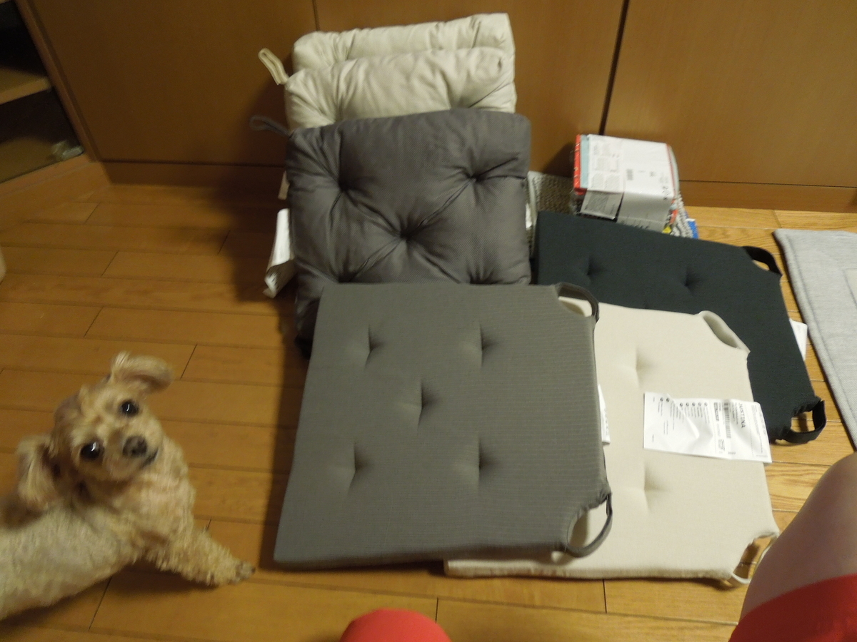 f:id:Ikegamiblog_tokyo:20200731214947j:plain