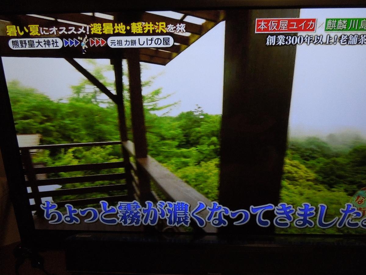f:id:Ikegamiblog_tokyo:20200804224857j:plain