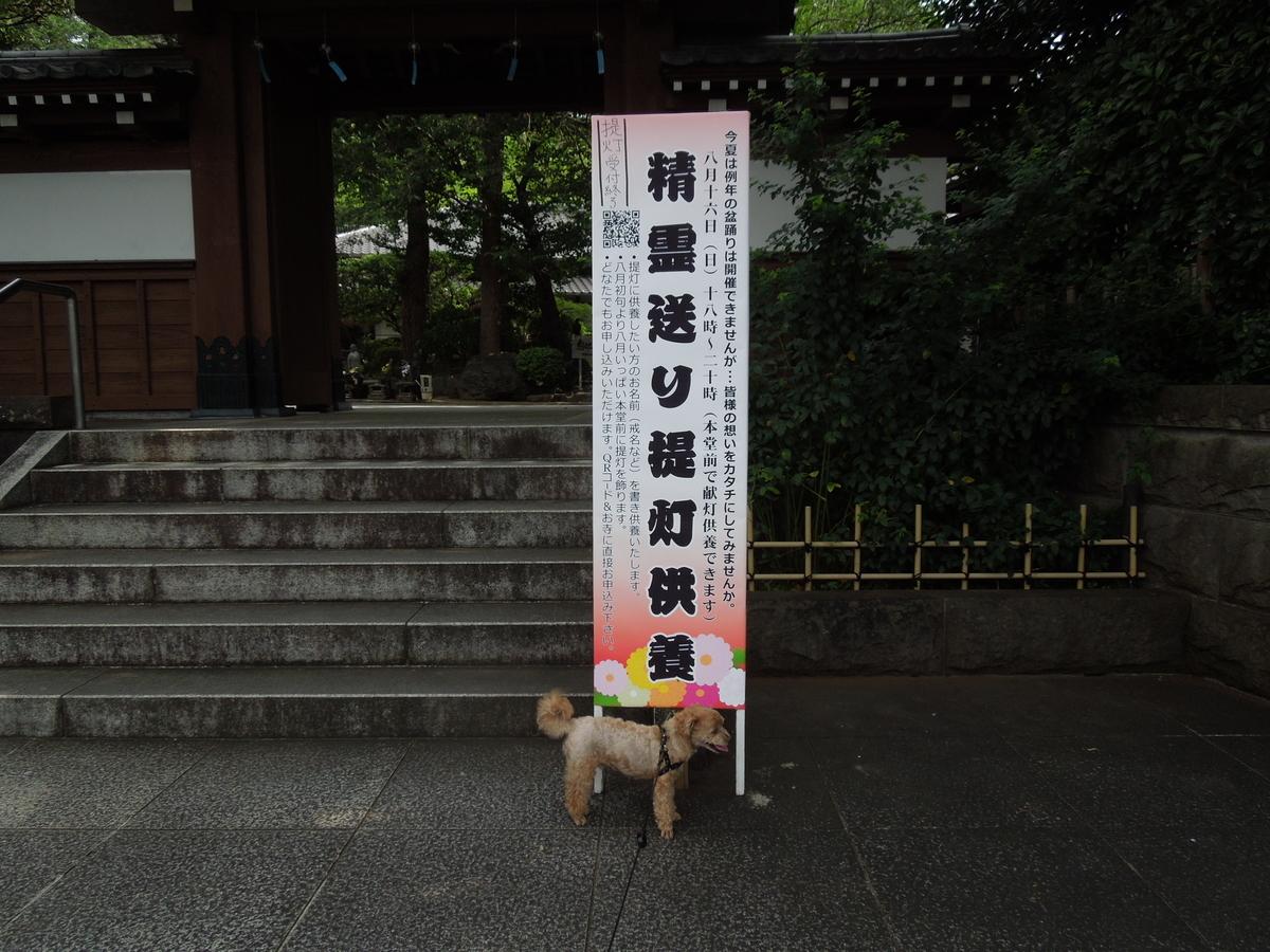 f:id:Ikegamiblog_tokyo:20200815204151j:plain