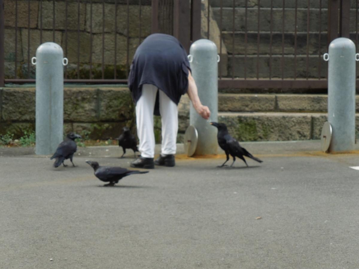 f:id:Ikegamiblog_tokyo:20200831202712j:plain