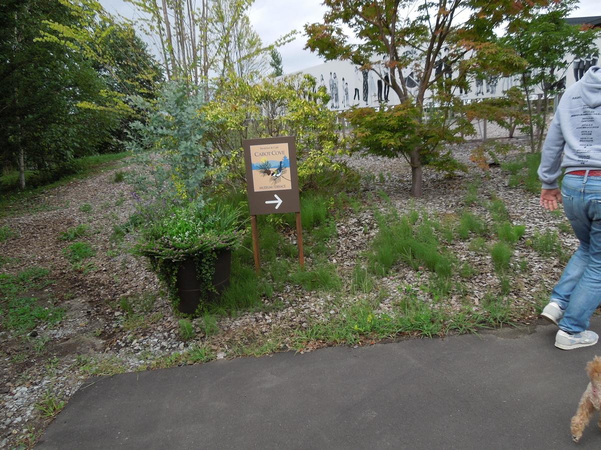 f:id:Ikegamiblog_tokyo:20200909212055j:plain