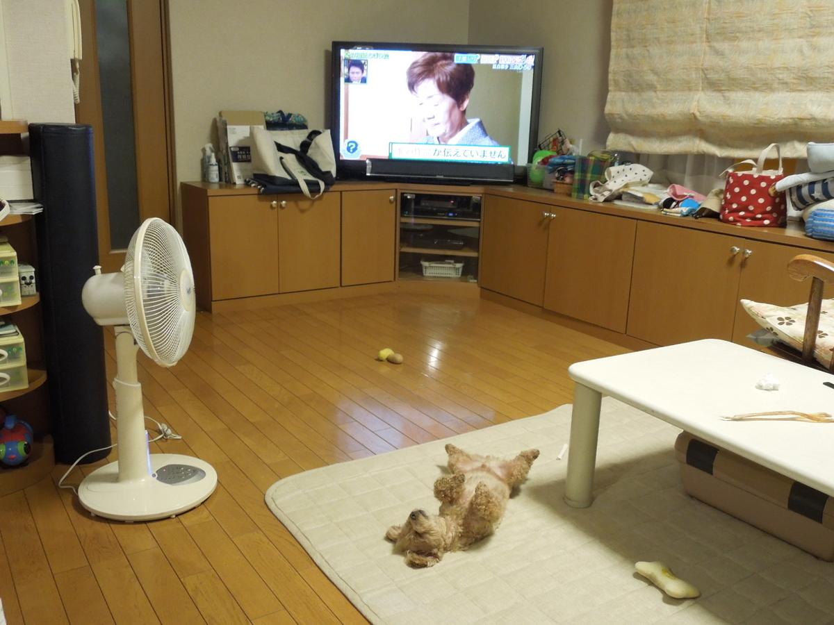 f:id:Ikegamiblog_tokyo:20200921220335j:plain