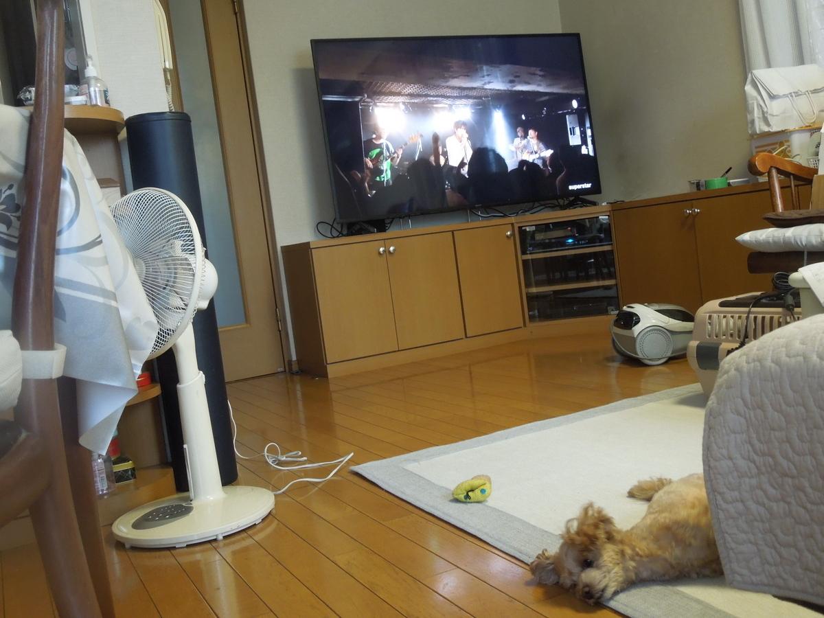 f:id:Ikegamiblog_tokyo:20200921220416j:plain