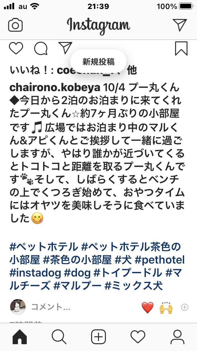 f:id:Ikegamiblog_tokyo:20201004214222p:plain