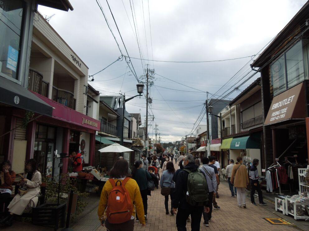 f:id:Ikegamiblog_tokyo:20201108102340j:plain