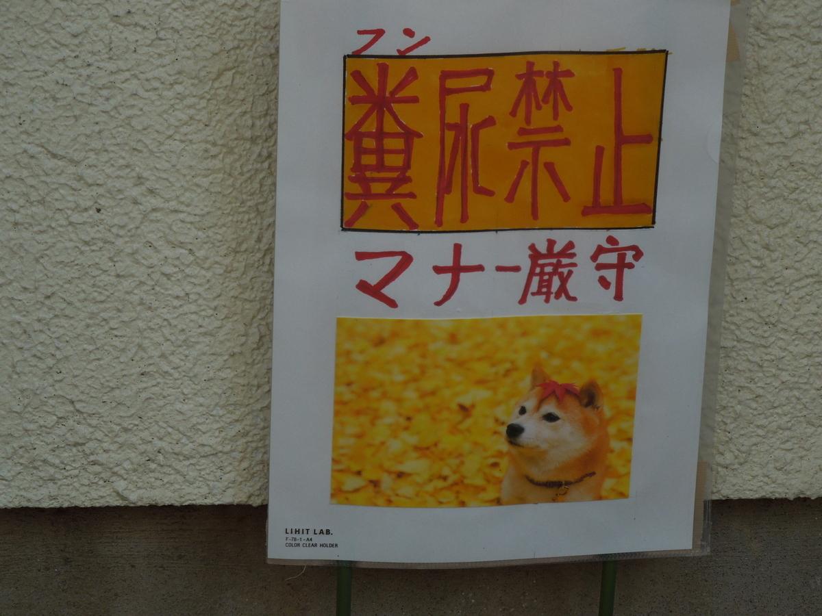 f:id:Ikegamiblog_tokyo:20201114215933j:plain