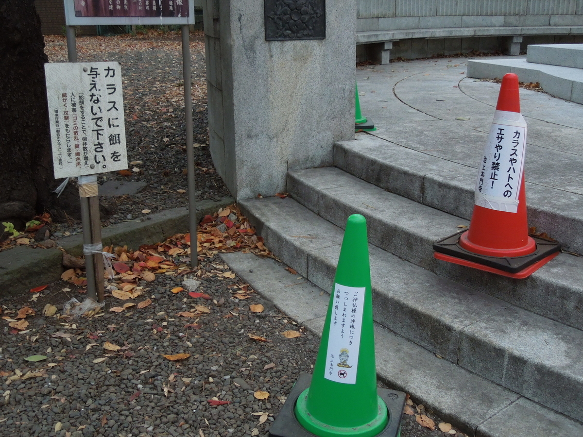 f:id:Ikegamiblog_tokyo:20201123201306j:plain