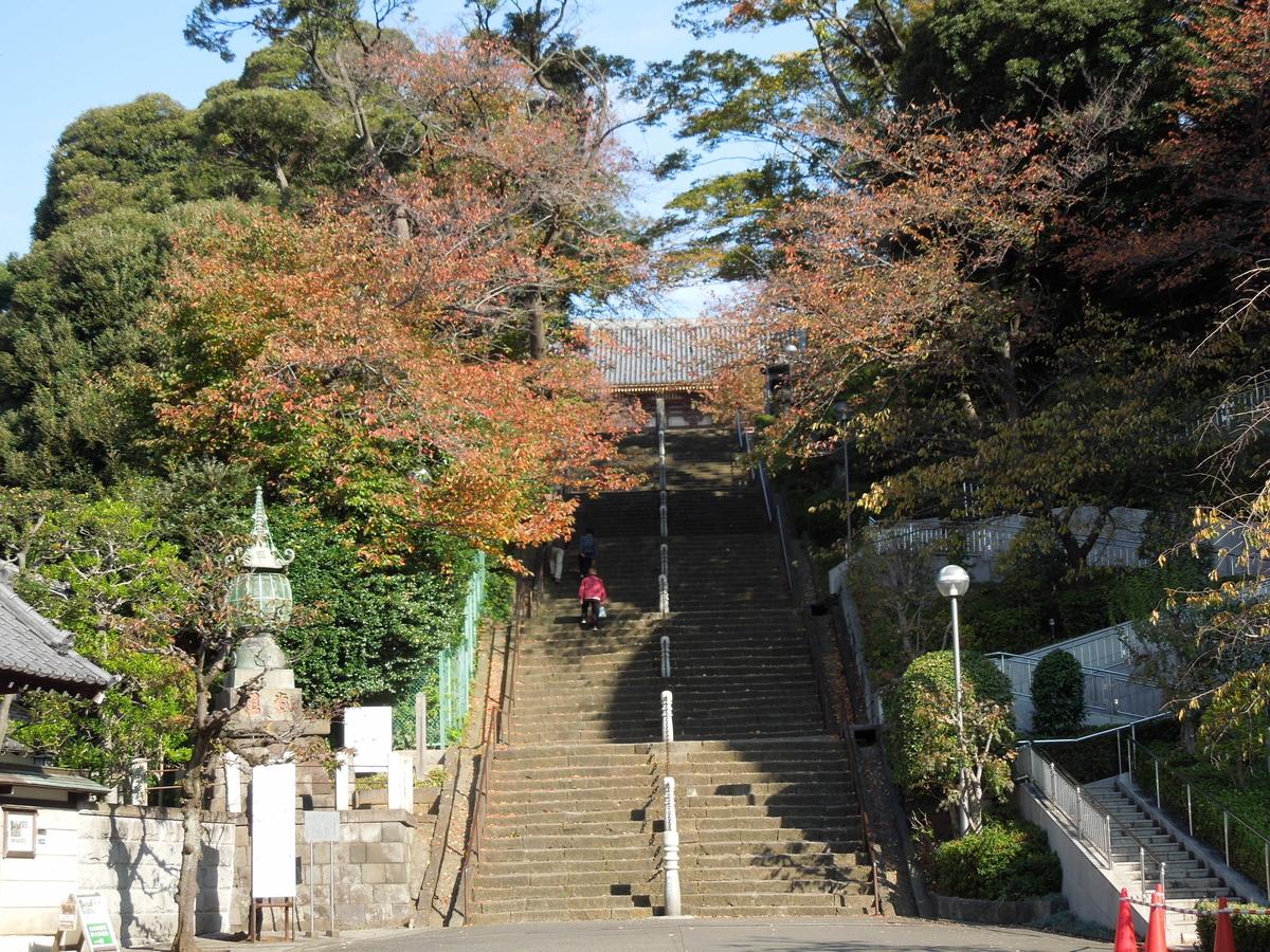 f:id:Ikegamiblog_tokyo:20201123203942j:plain