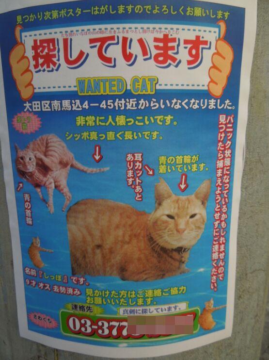 f:id:Ikegamiblog_tokyo:20201129203655j:plain