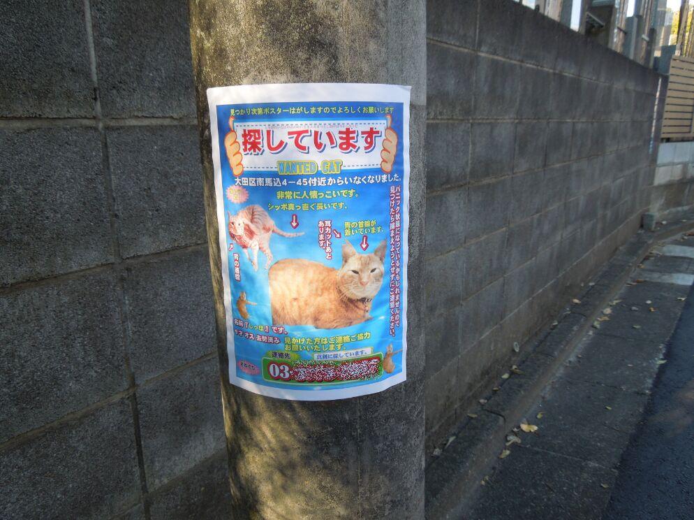 f:id:Ikegamiblog_tokyo:20201129203852j:plain
