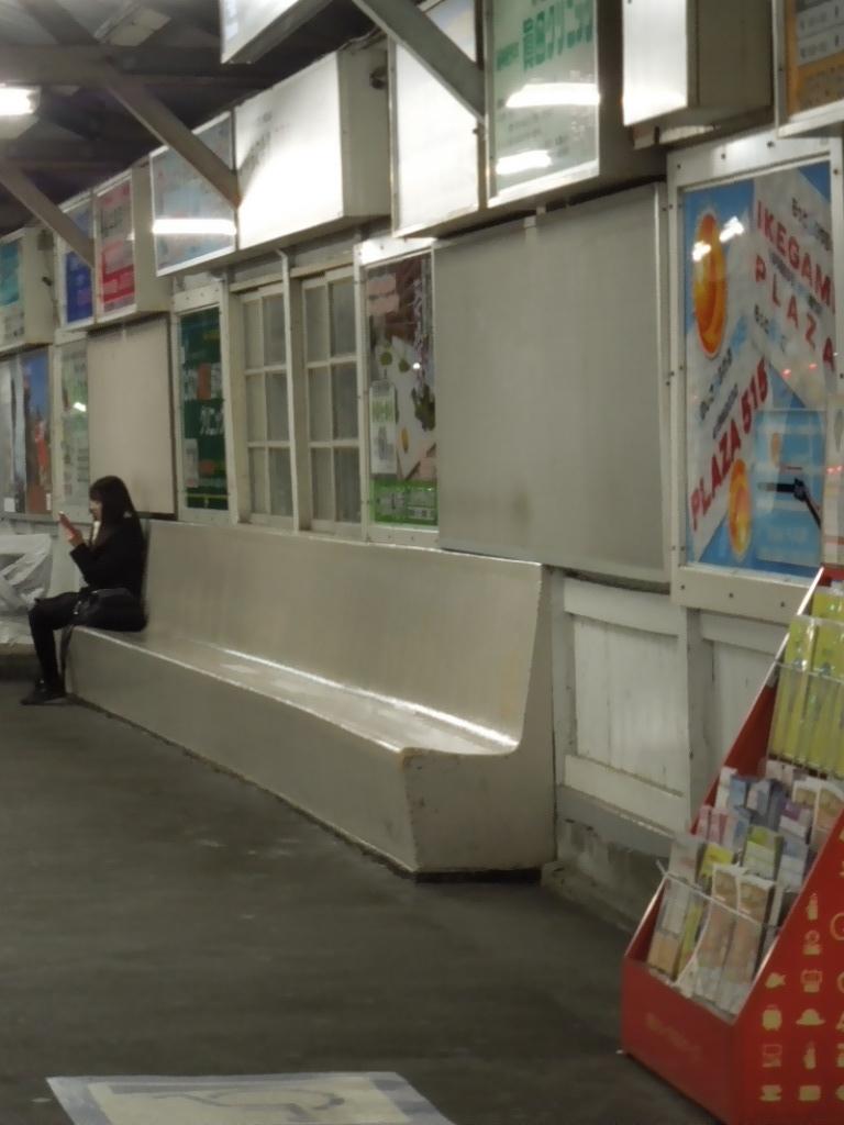 f:id:Ikegamiblog_tokyo:20201213214517j:plain