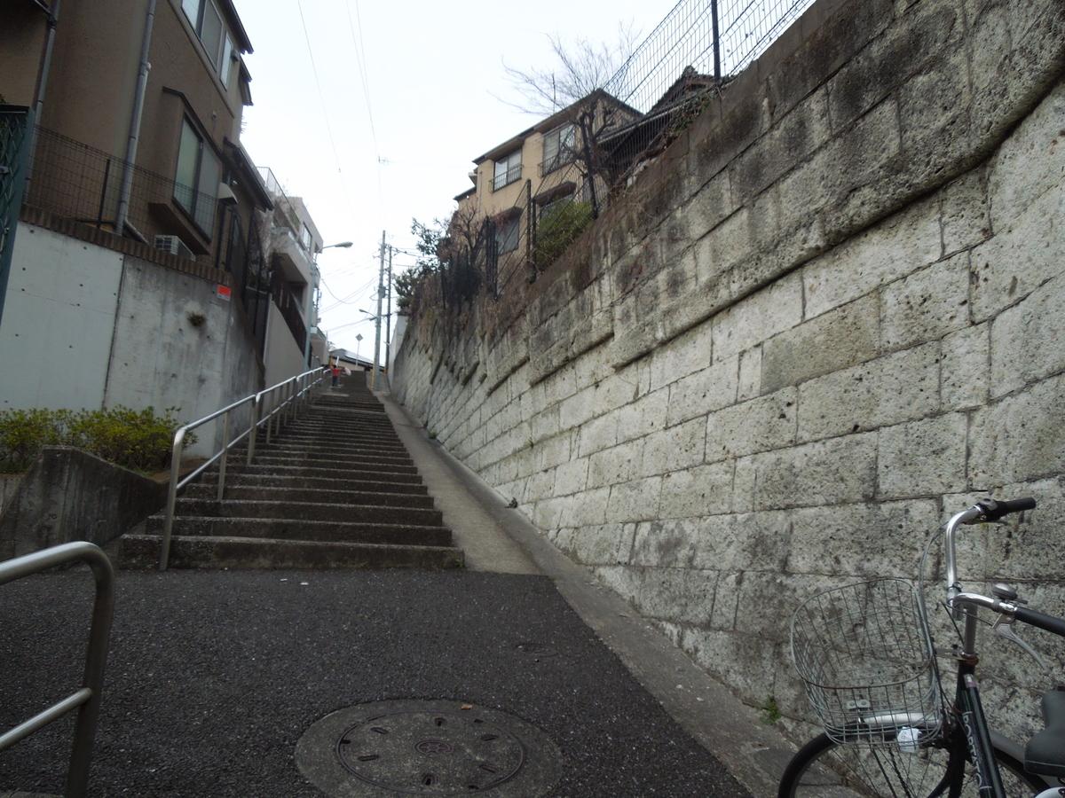 f:id:Ikegamiblog_tokyo:20210105220135j:plain