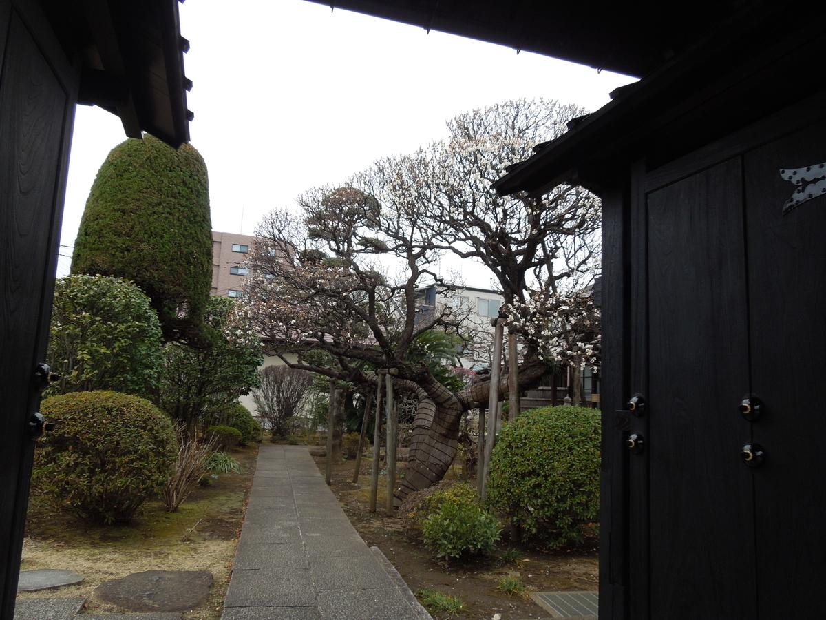 f:id:Ikegamiblog_tokyo:20210128133340j:plain