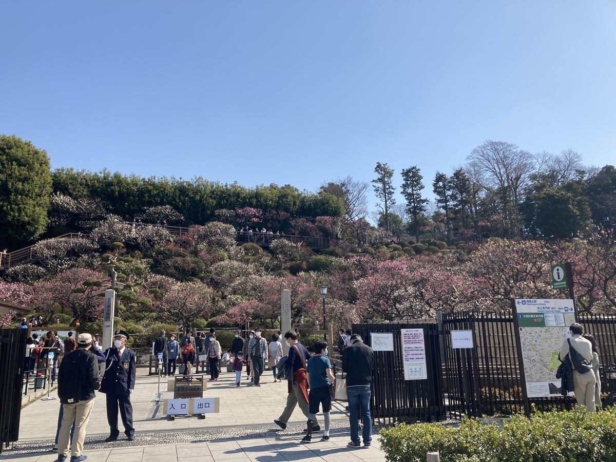 f:id:Ikegamiblog_tokyo:20210221124921j:plain