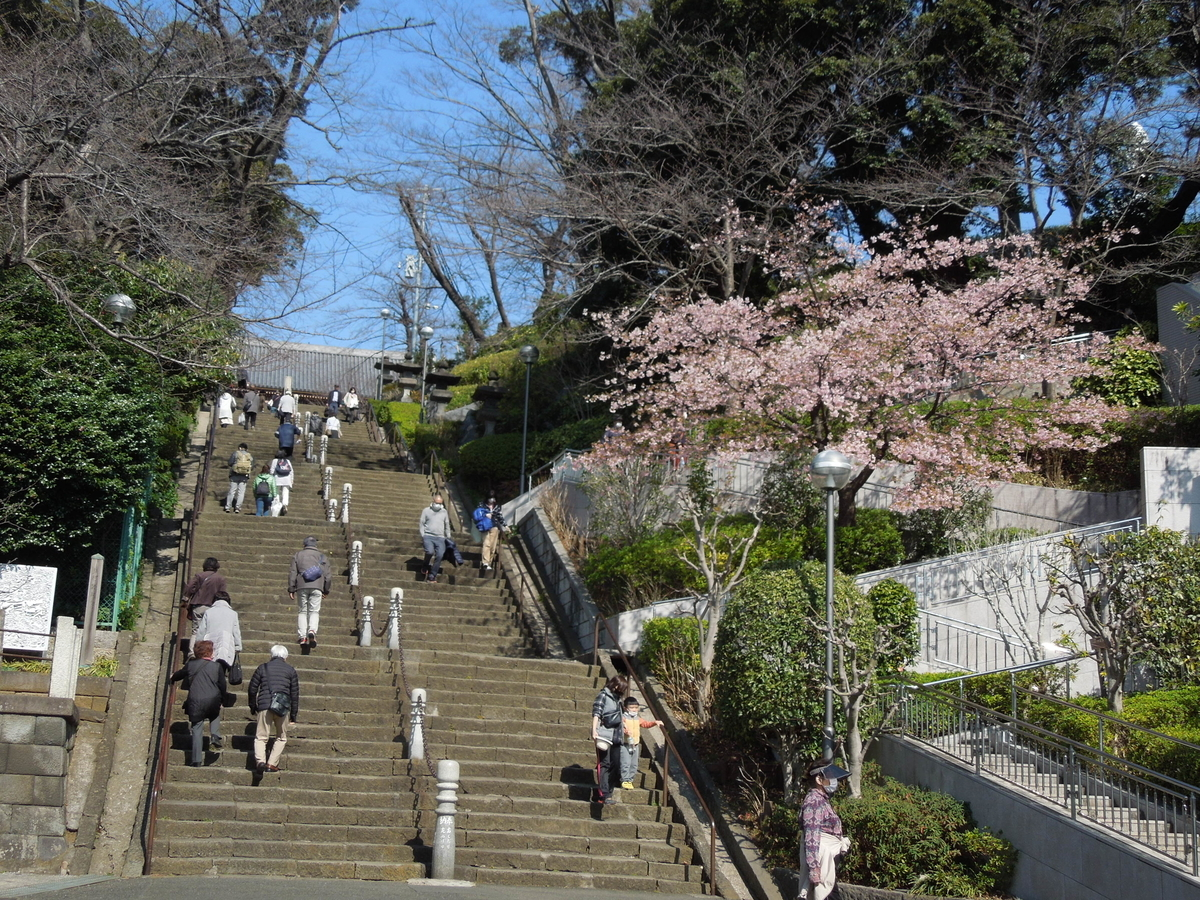 f:id:Ikegamiblog_tokyo:20210221125241j:plain