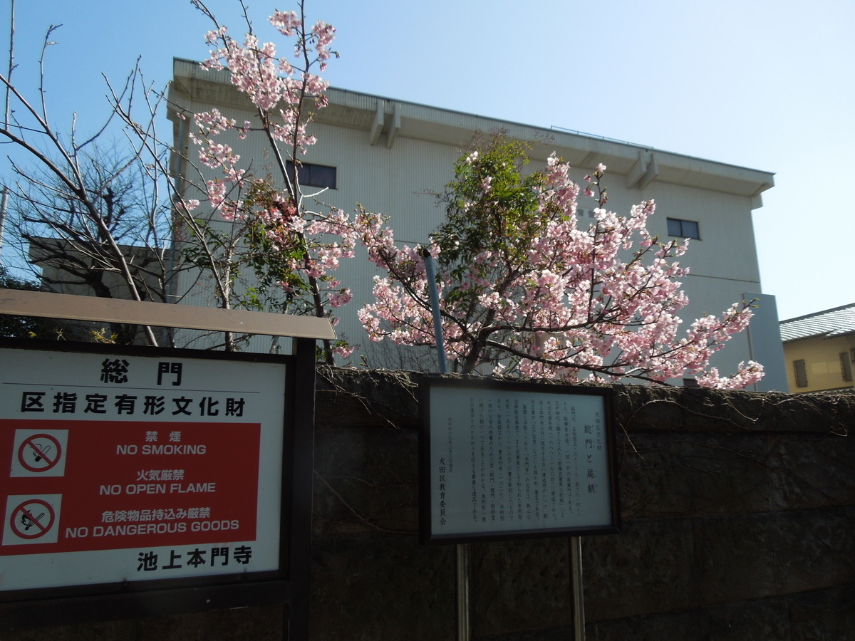 f:id:Ikegamiblog_tokyo:20210221125321j:plain