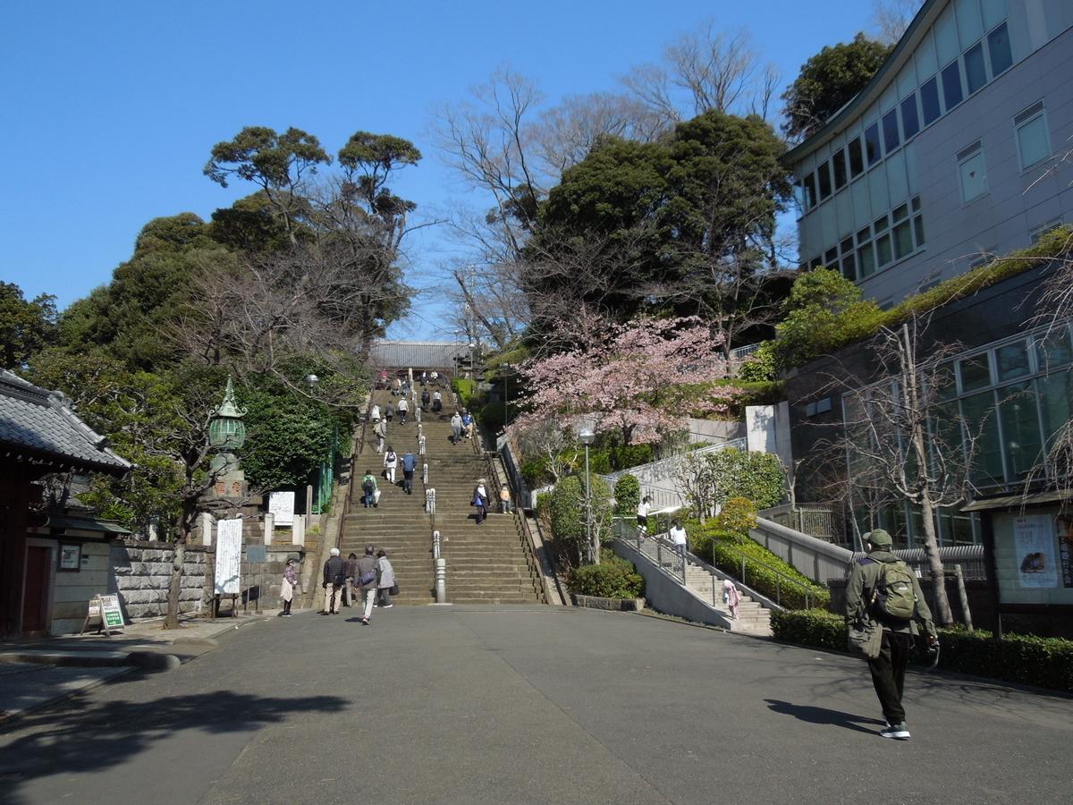 f:id:Ikegamiblog_tokyo:20210221125503j:plain