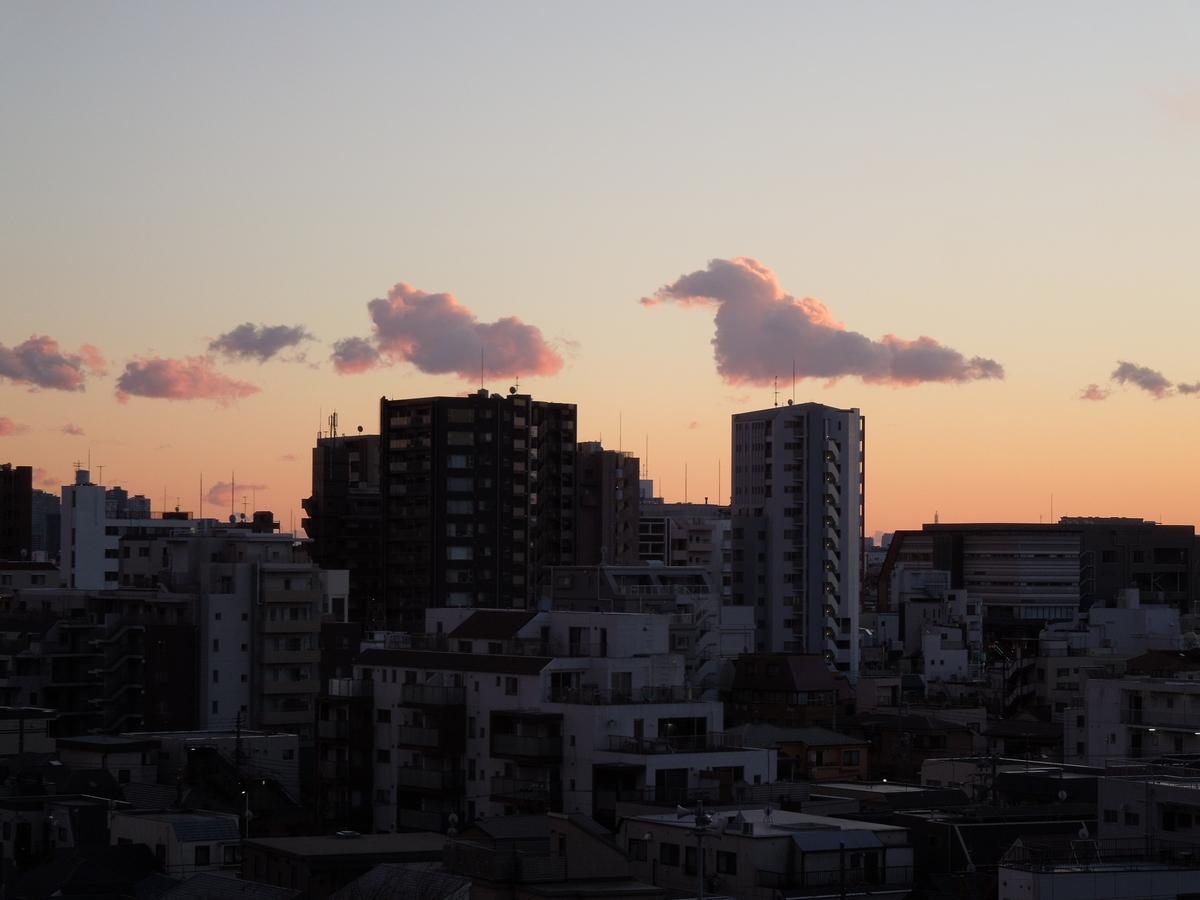 f:id:Ikegamiblog_tokyo:20210227133832j:plain