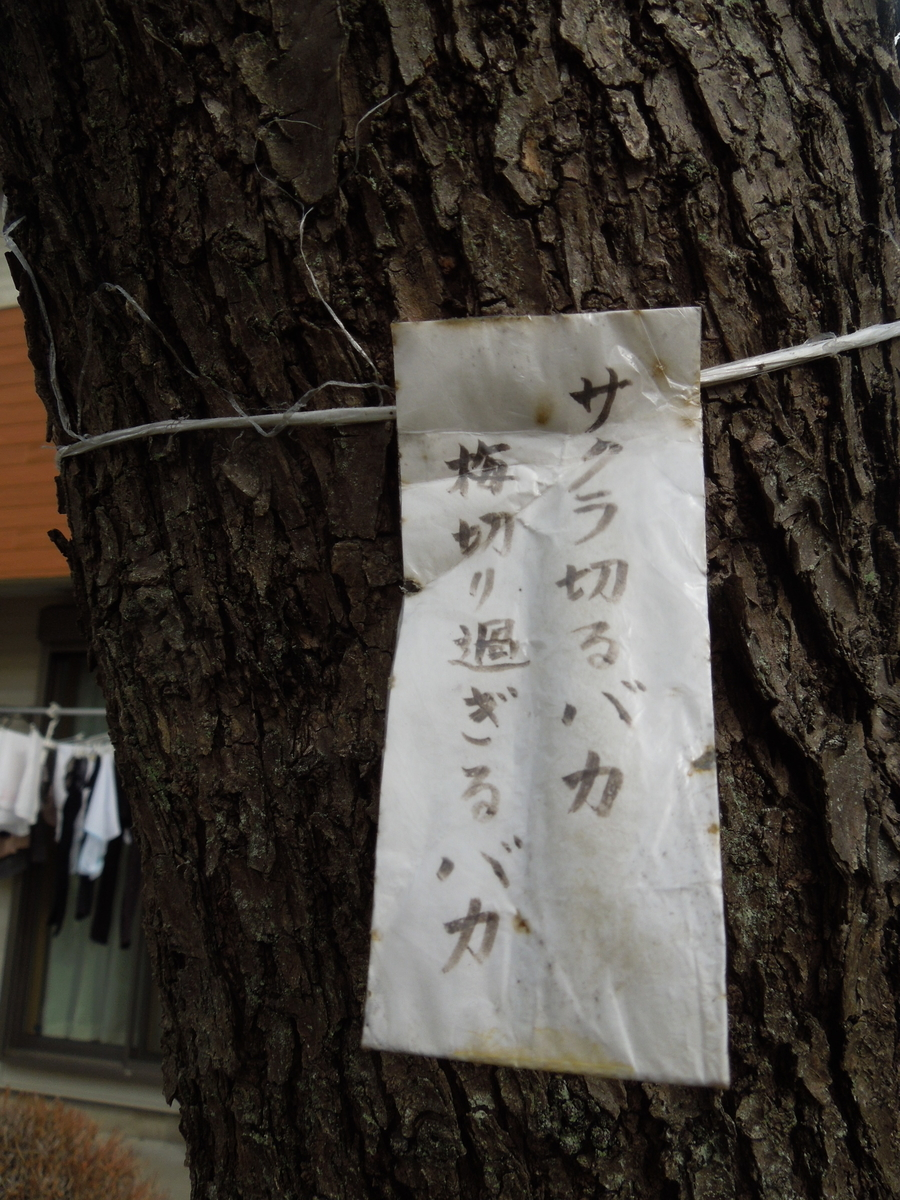 f:id:Ikegamiblog_tokyo:20210305114936j:plain