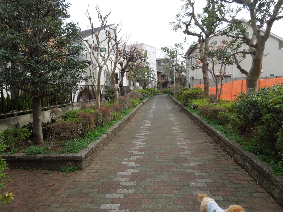 f:id:Ikegamiblog_tokyo:20210305115004j:plain