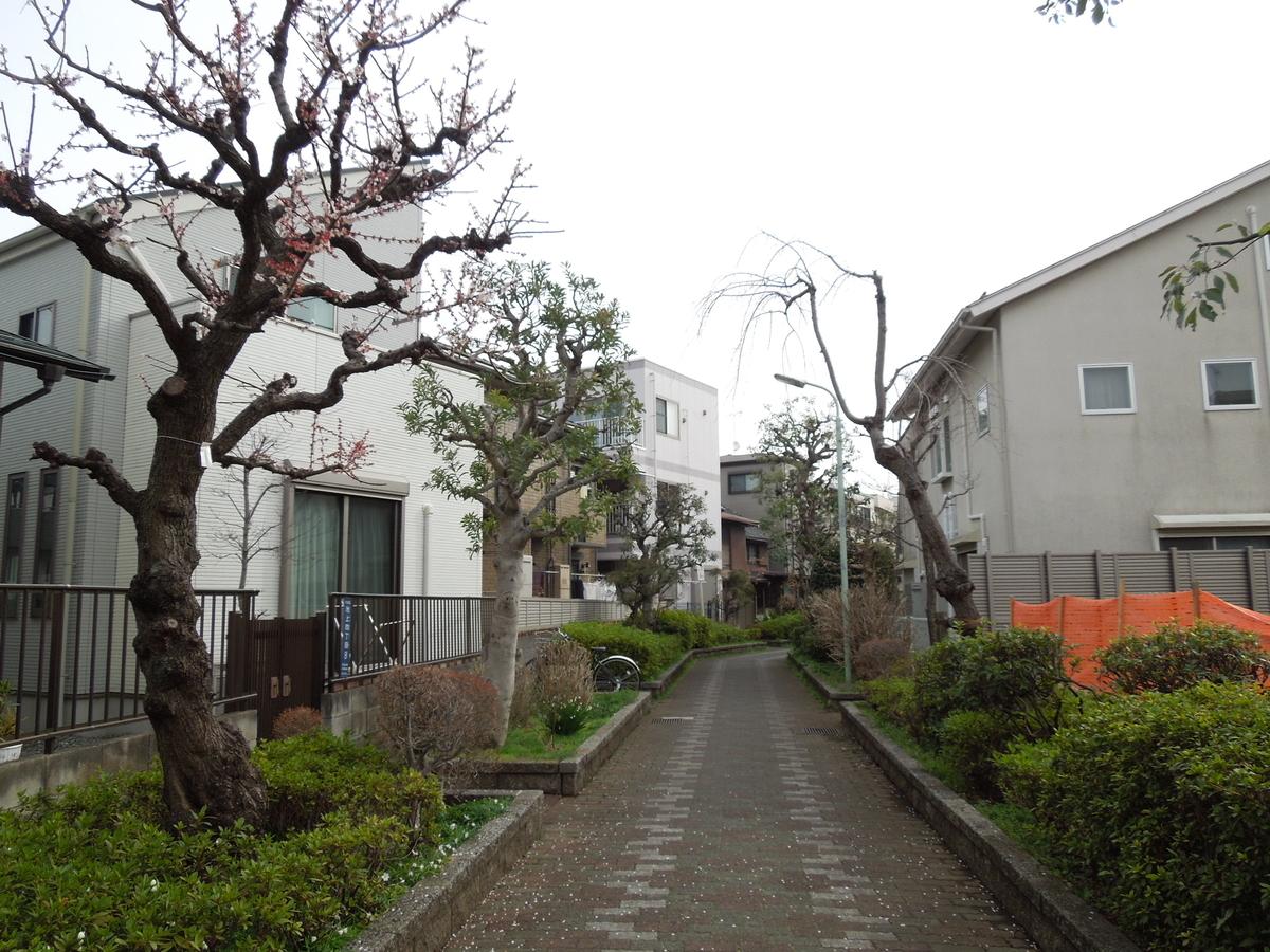 f:id:Ikegamiblog_tokyo:20210305115027j:plain