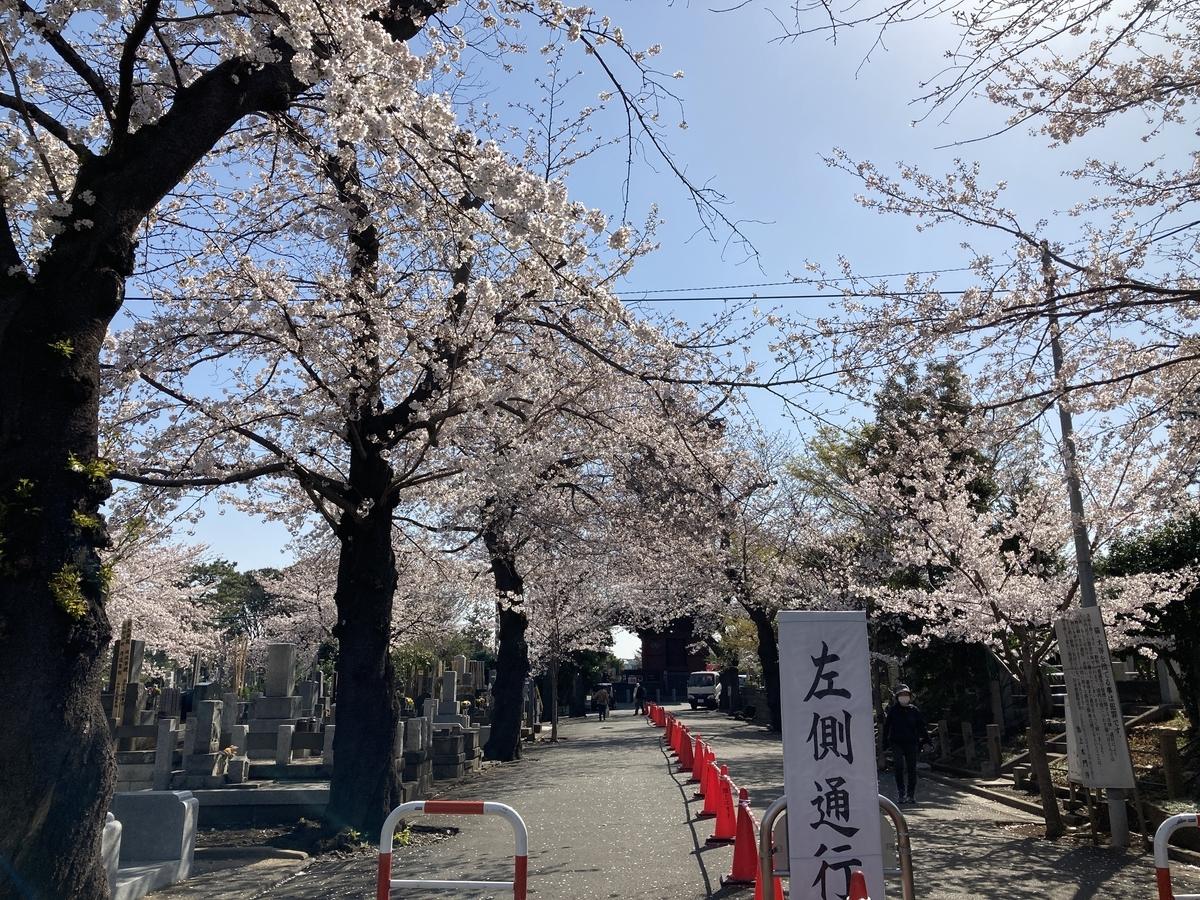 f:id:Ikegamiblog_tokyo:20210328152653j:plain