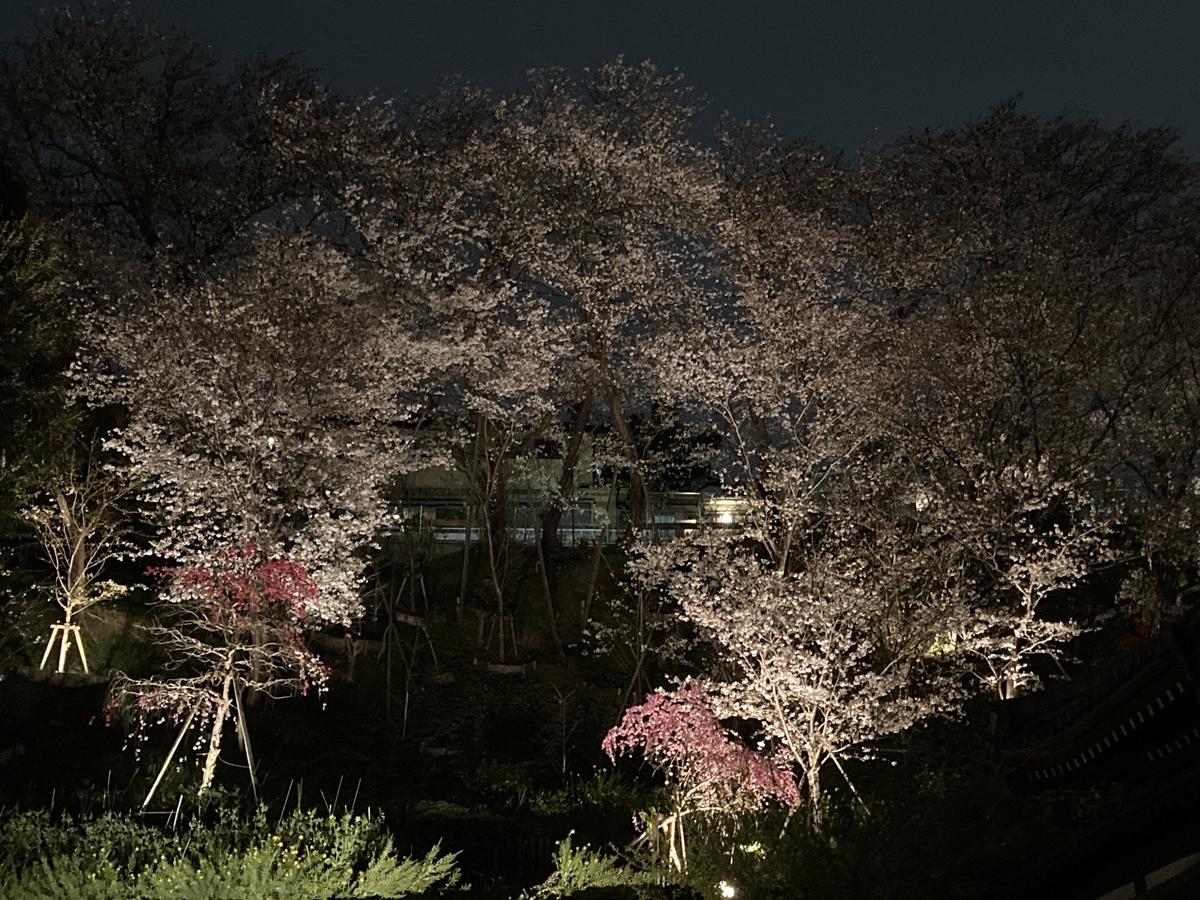 f:id:Ikegamiblog_tokyo:20210328172003j:plain