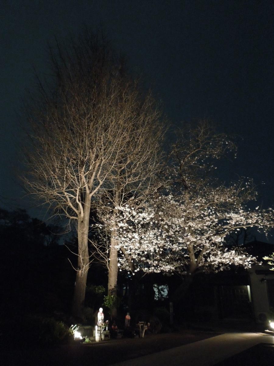 f:id:Ikegamiblog_tokyo:20210328185138j:plain