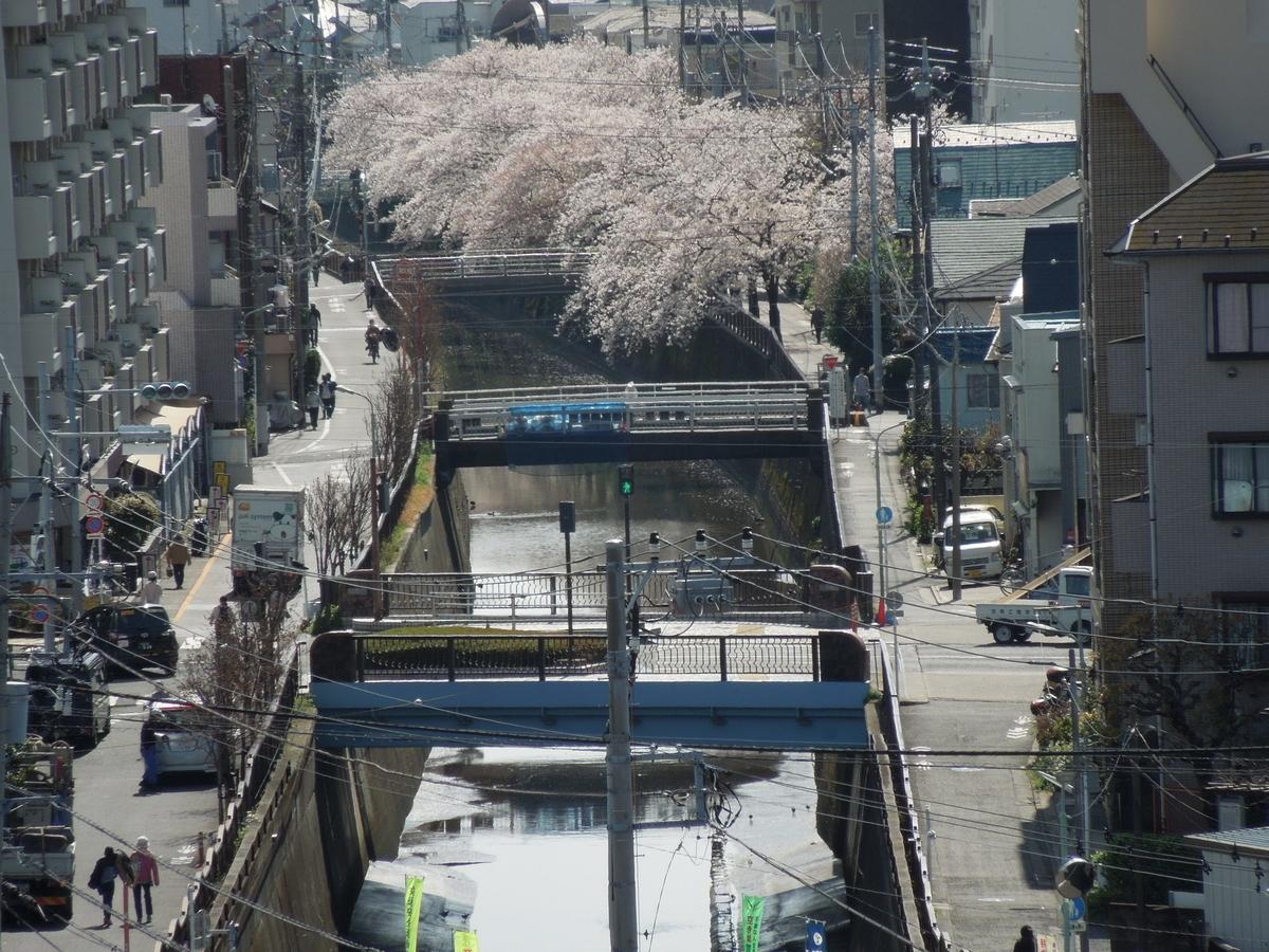 f:id:Ikegamiblog_tokyo:20210404221022j:plain