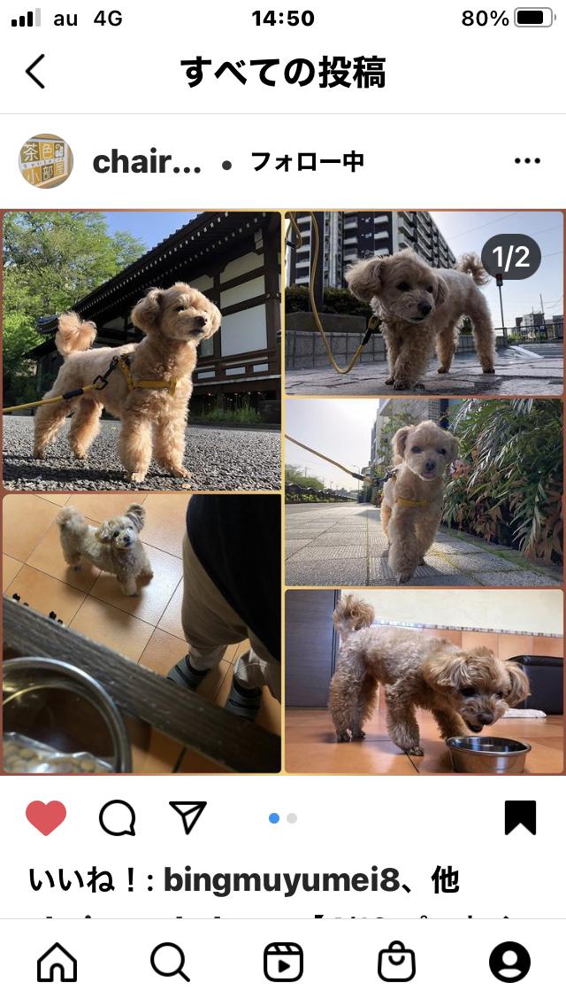 f:id:Ikegamiblog_tokyo:20210420160143p:plain