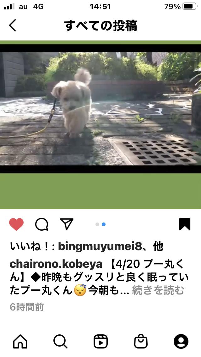 f:id:Ikegamiblog_tokyo:20210420221333p:plain