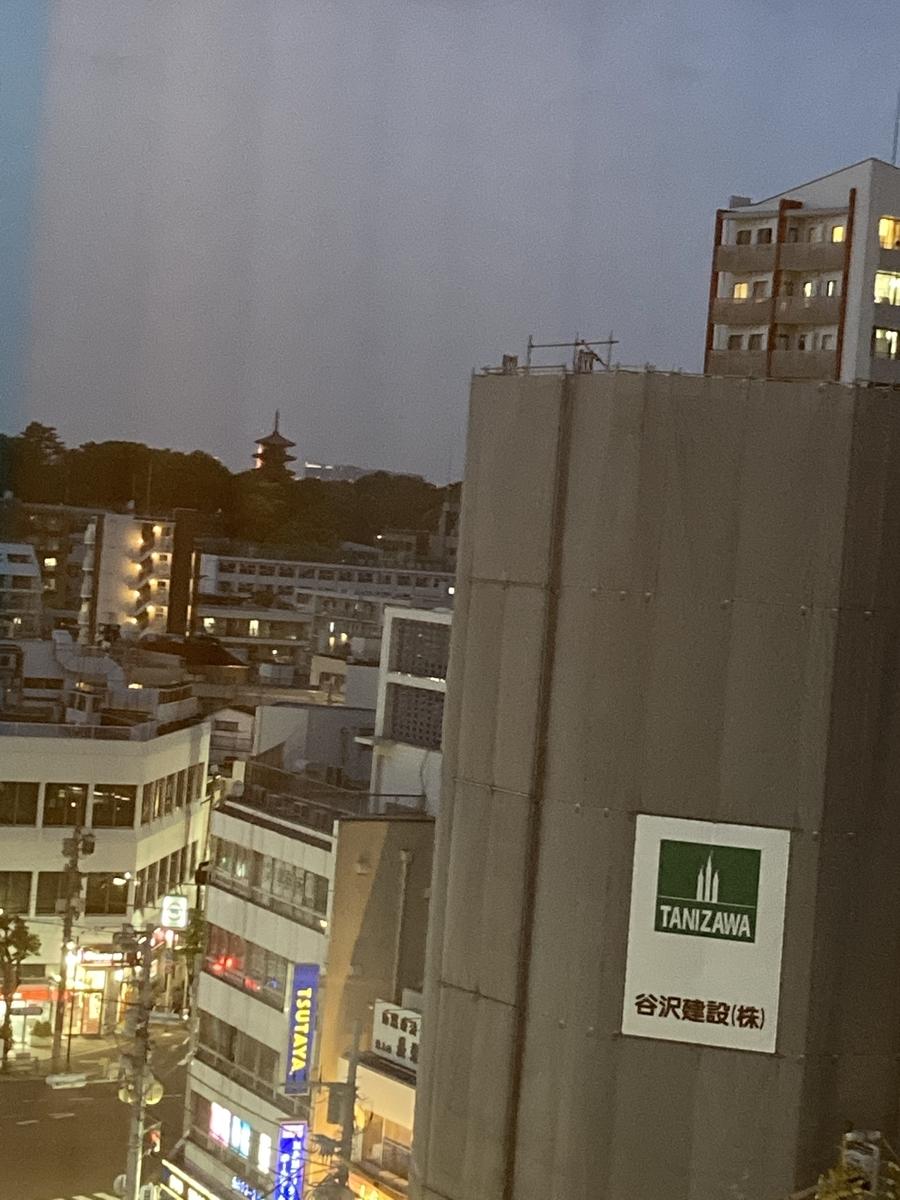 f:id:Ikegamiblog_tokyo:20210515213816j:plain