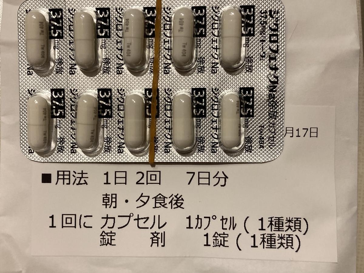 f:id:Ikegamiblog_tokyo:20210517152838j:plain
