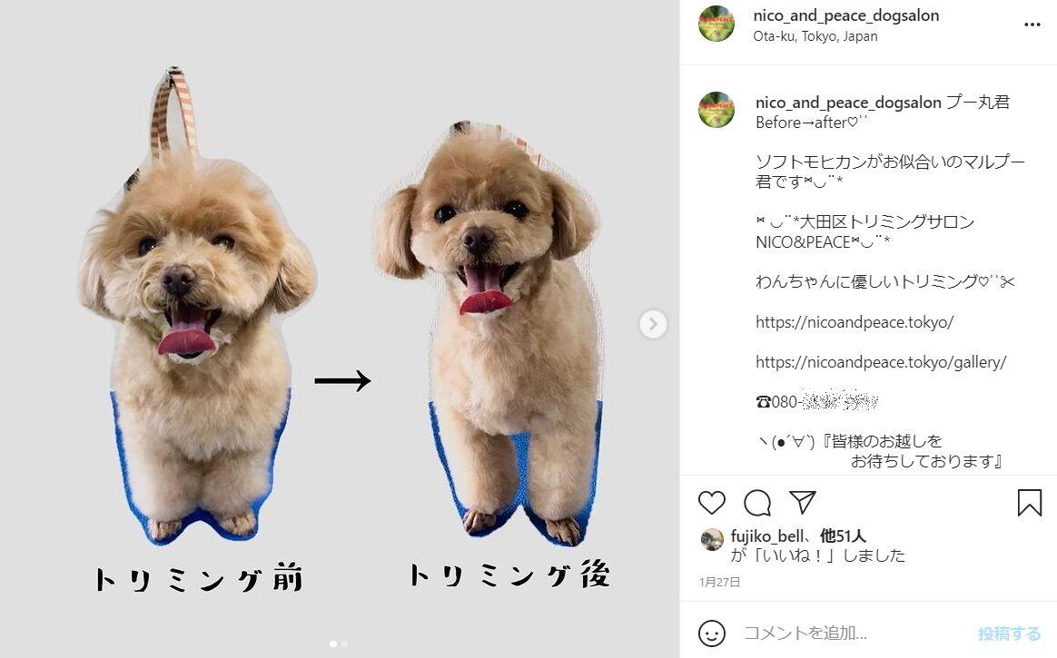 f:id:Ikegamiblog_tokyo:20210523203503j:plain