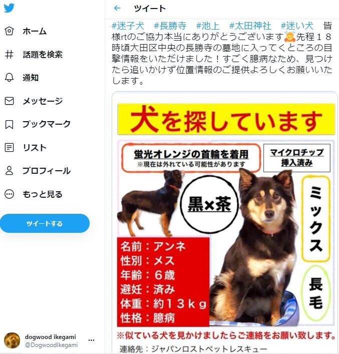 f:id:Ikegamiblog_tokyo:20210601223510j:plain