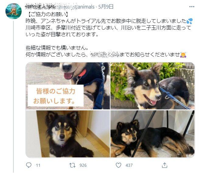 f:id:Ikegamiblog_tokyo:20210602223508j:plain