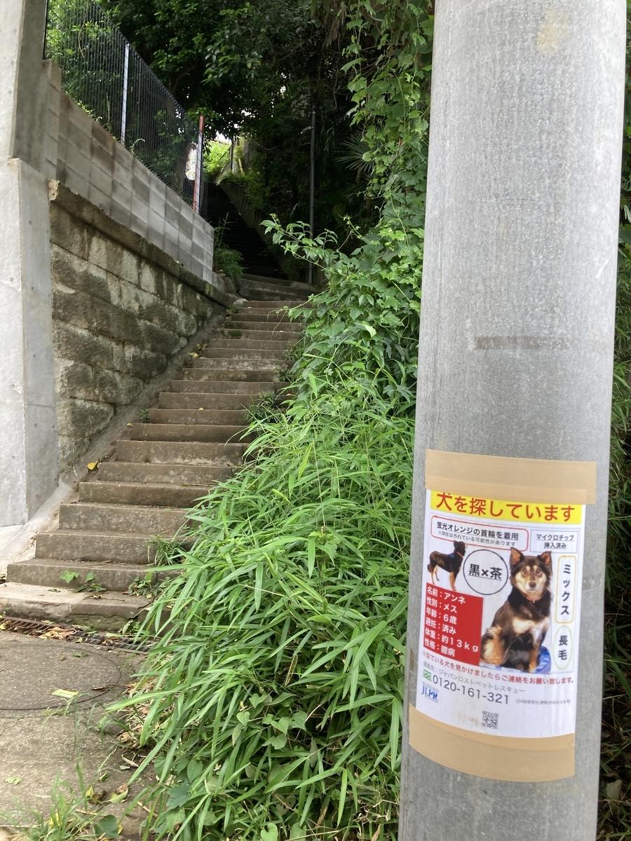 f:id:Ikegamiblog_tokyo:20210605184625j:plain