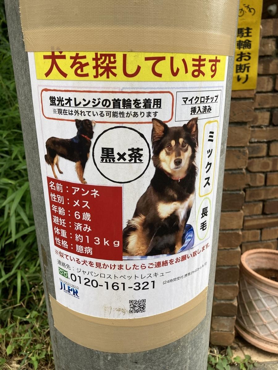 f:id:Ikegamiblog_tokyo:20210605184632j:plain