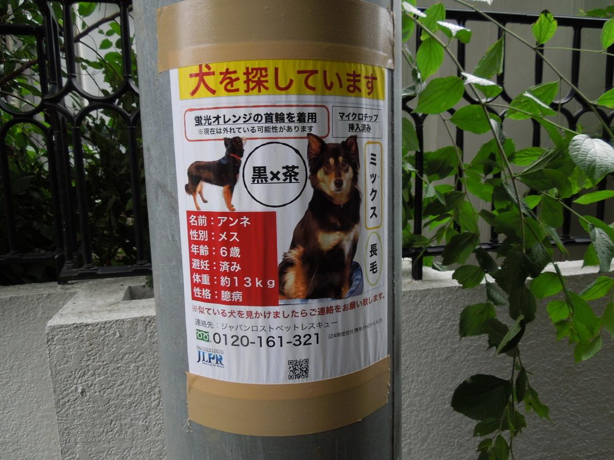 f:id:Ikegamiblog_tokyo:20210607235640j:plain