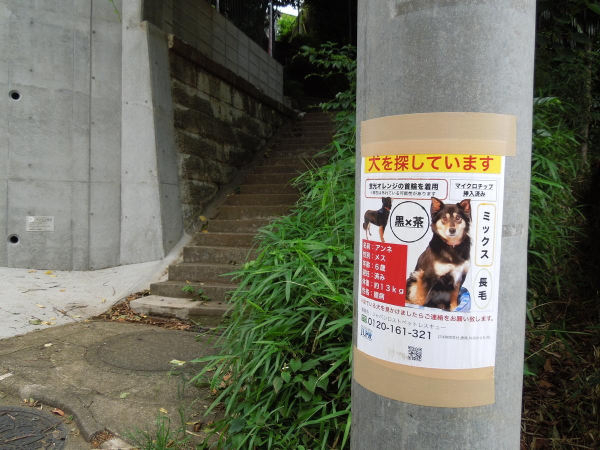 f:id:Ikegamiblog_tokyo:20210607235813j:plain