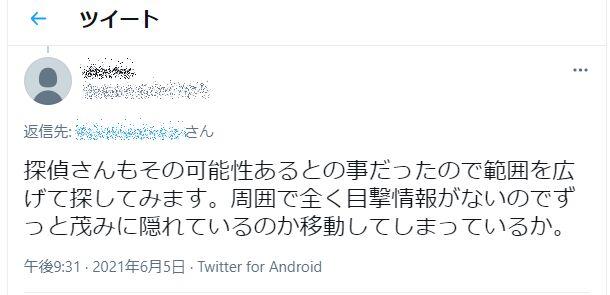 f:id:Ikegamiblog_tokyo:20210608210056j:plain