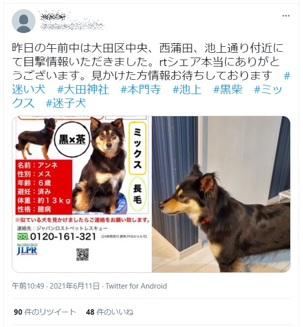 f:id:Ikegamiblog_tokyo:20210611195246j:plain