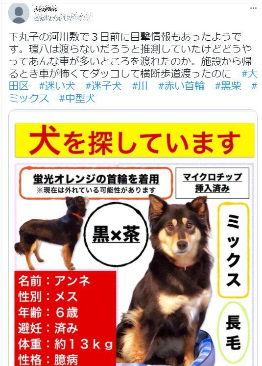 f:id:Ikegamiblog_tokyo:20210615213351j:plain