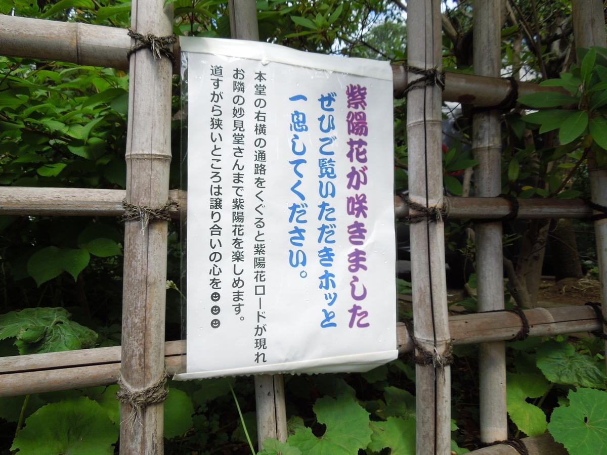 f:id:Ikegamiblog_tokyo:20210618231711j:plain