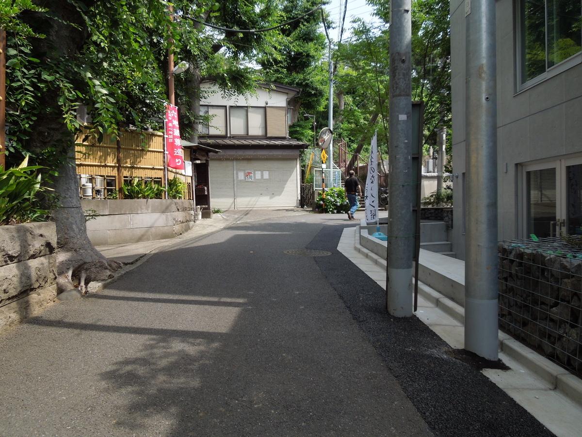 f:id:Ikegamiblog_tokyo:20210623213337j:plain
