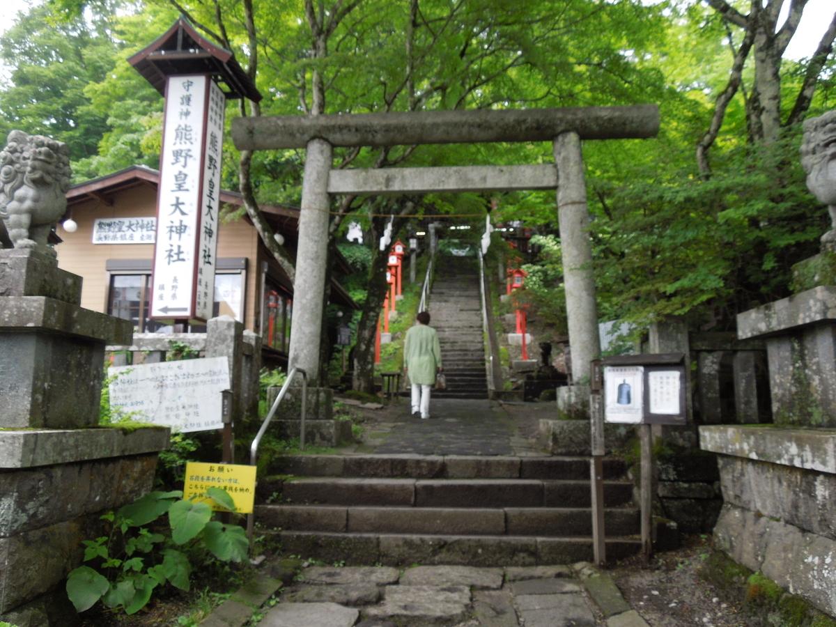 f:id:Ikegamiblog_tokyo:20210705220357j:plain