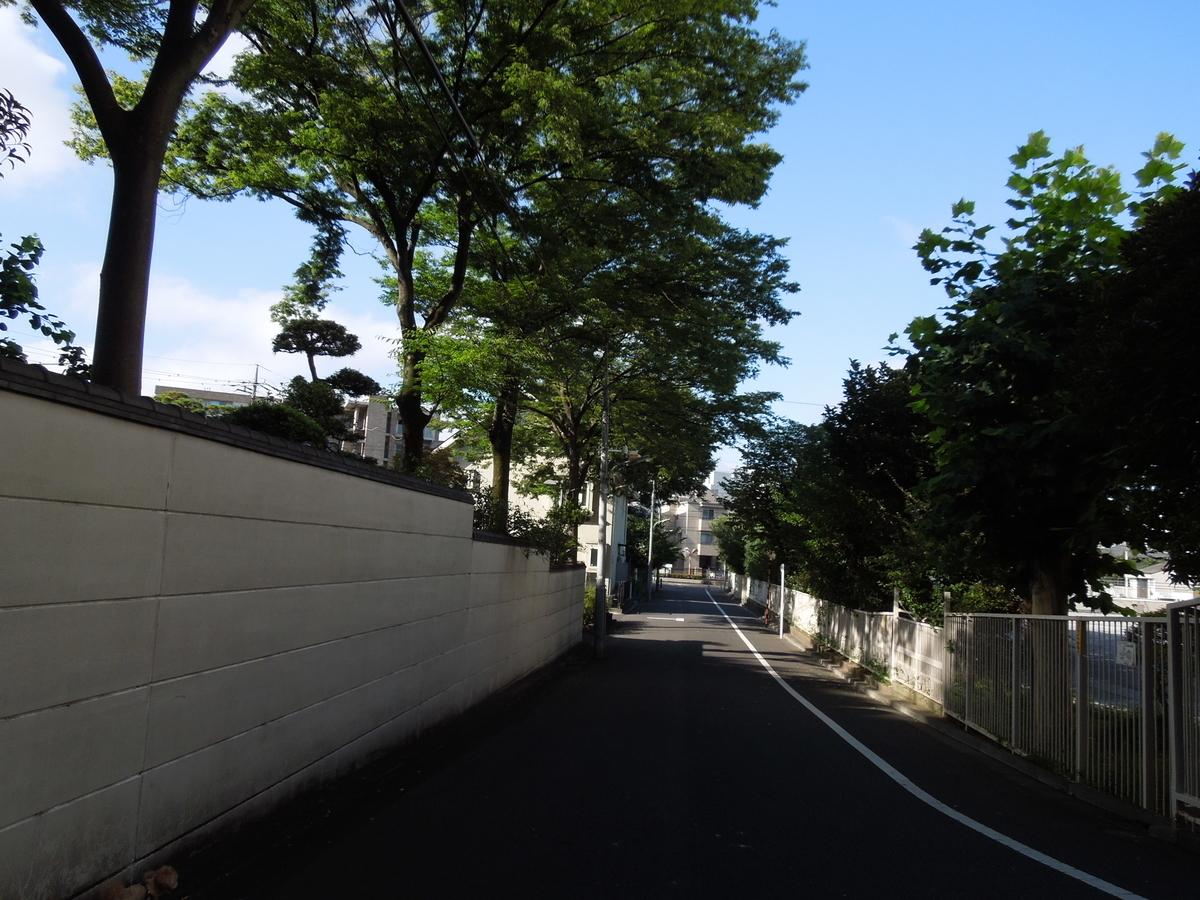 f:id:Ikegamiblog_tokyo:20210720134546j:plain