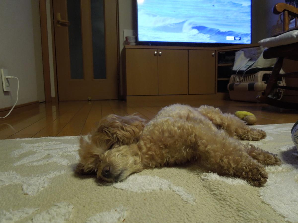 f:id:Ikegamiblog_tokyo:20210825215245j:plain