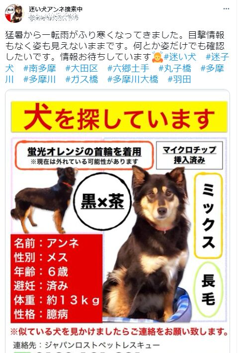 f:id:Ikegamiblog_tokyo:20210906160943j:plain